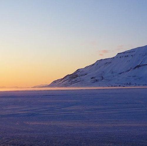 Snelandskab