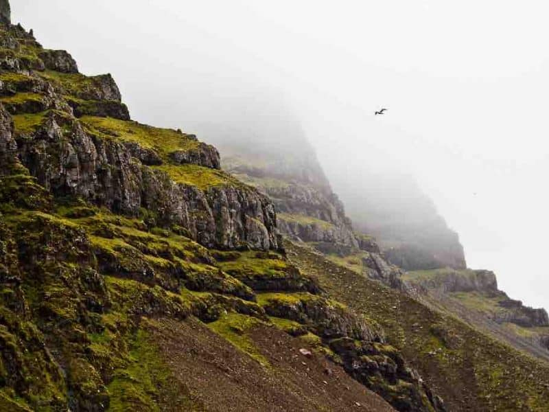 Cliffs-East-Iceland2