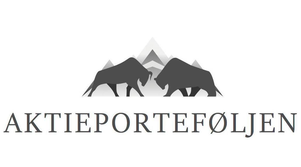 Aktieporteføljen logo